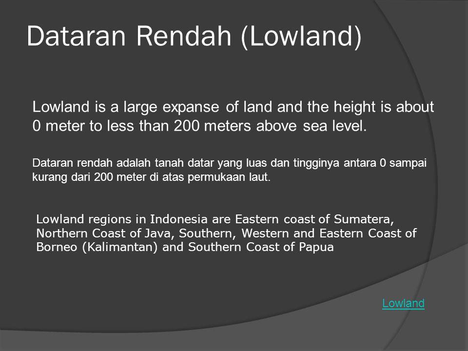 Dataran Rendah (Lowland)