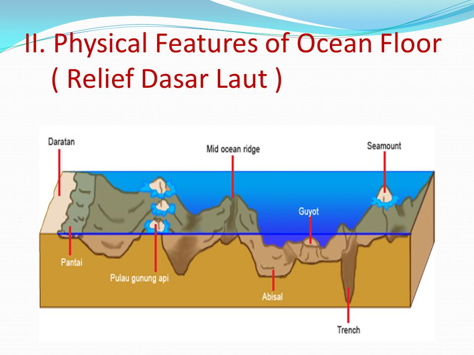 II. Physical Features of Ocean Floor ( Relief Dasar Laut )