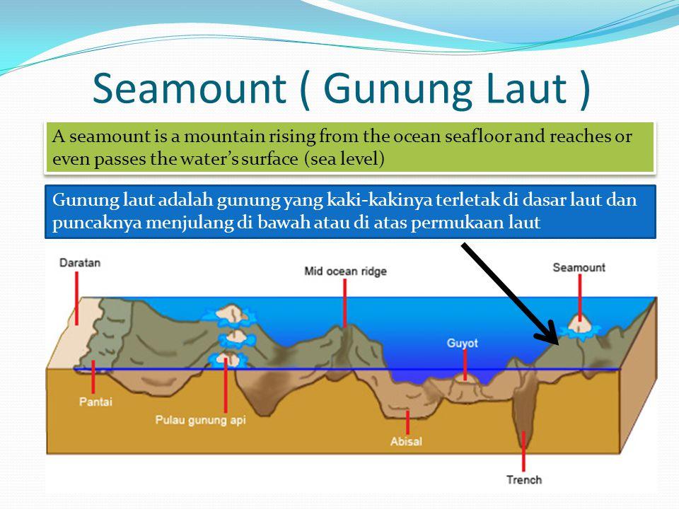 Seamount ( Gunung Laut )