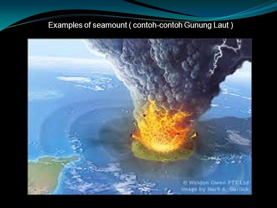 Examples of seamount ( contoh-contoh Gunung Laut )