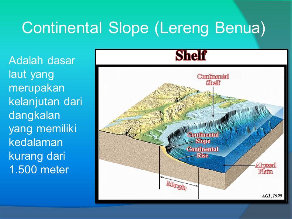 Continental Slope (Lereng Benua)