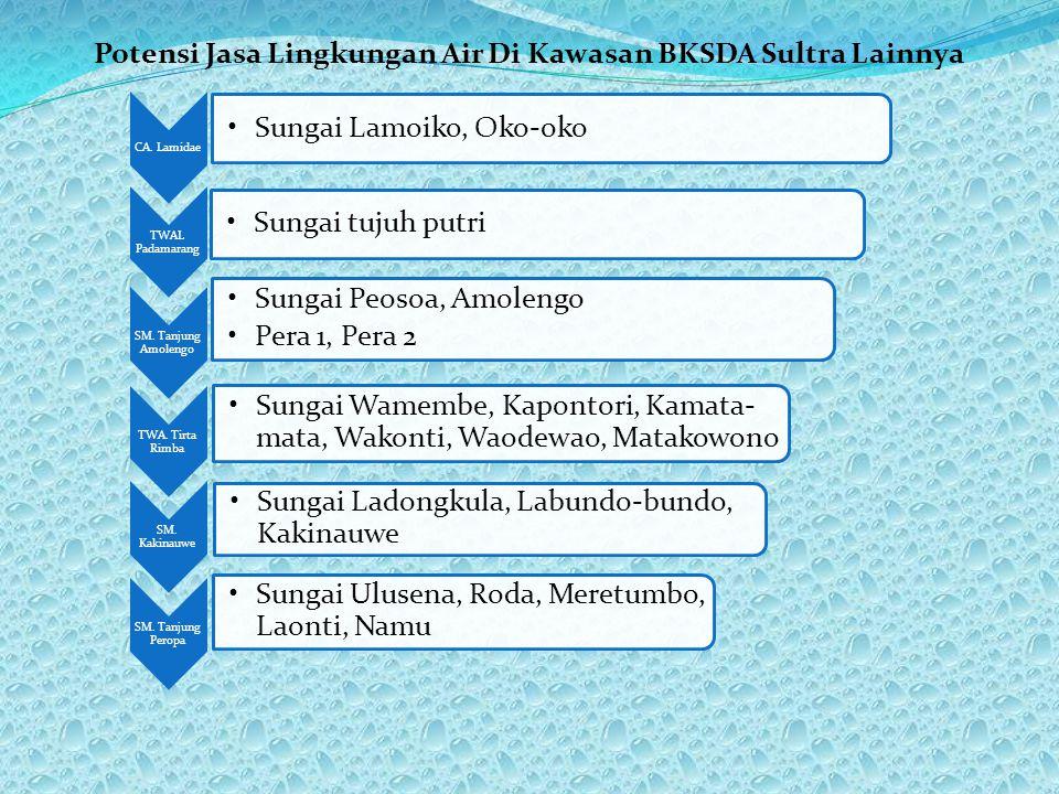 Potensi Jasa Lingkungan Air Di Kawasan BKSDA Sultra Lainnya