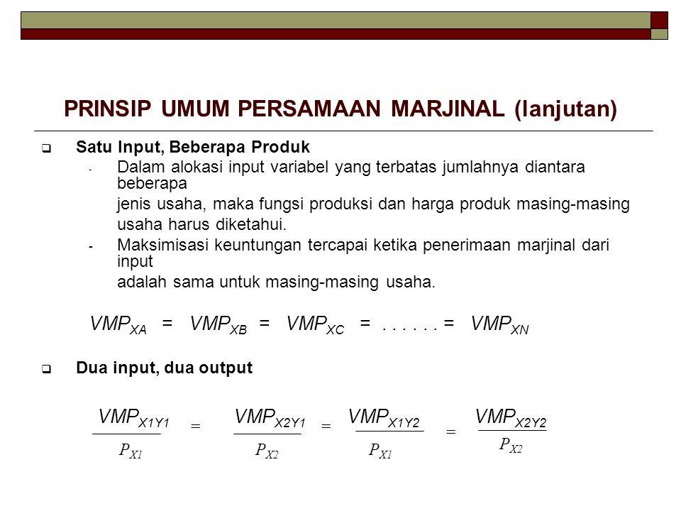 PRINSIP UMUM PERSAMAAN MARJINAL (lanjutan)