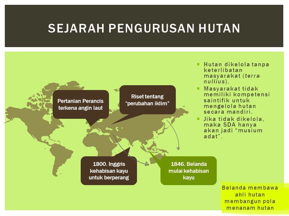 Sejarah Pengurusan Hutan