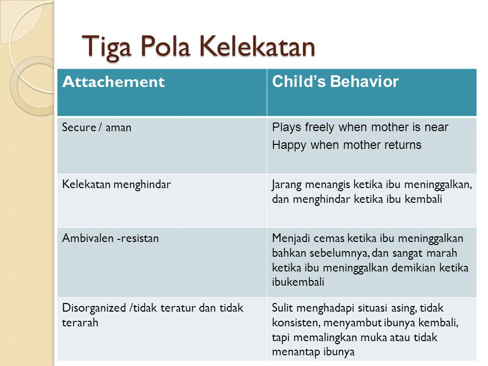 Tiga Pola Kelekatan Attachement Child's Behavior Secure / aman
