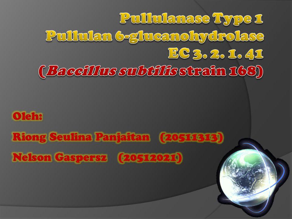 Pullulanase Type 1 Pullulan 6-glucanohydrolase EC 3. 2. 1