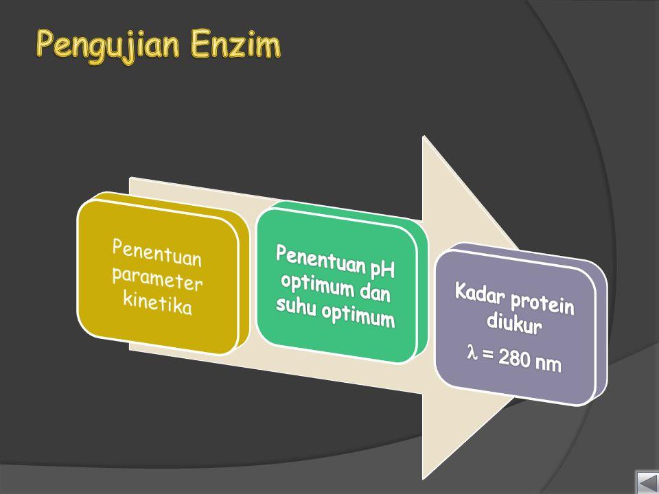 Pengujian Enzim Penentuan pH optimum dan suhu optimum