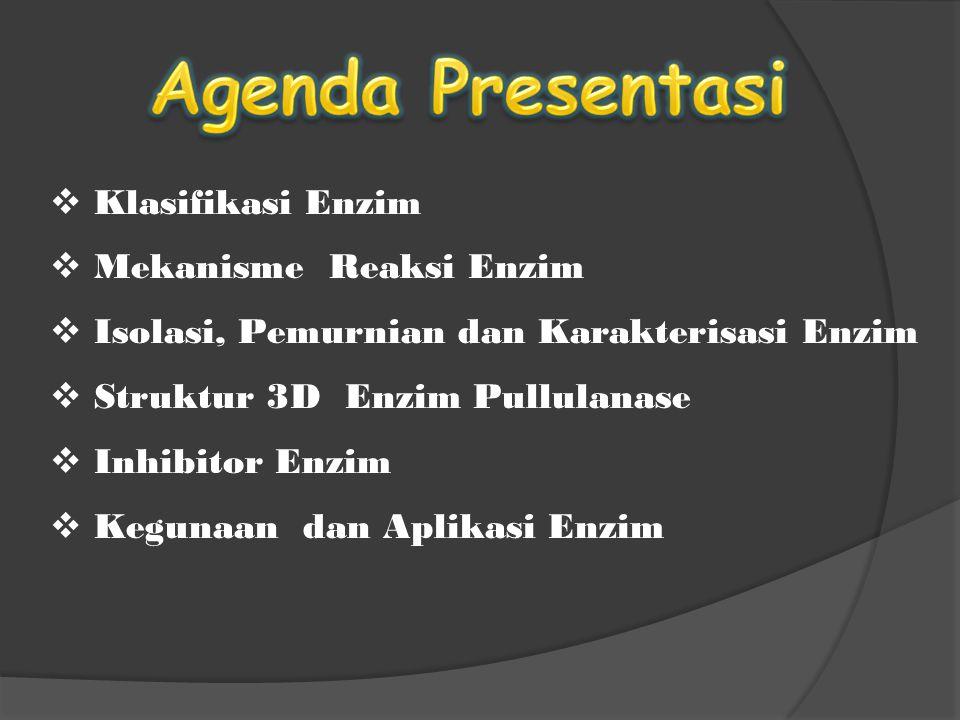 Agenda Presentasi Klasifikasi Enzim Mekanisme Reaksi Enzim