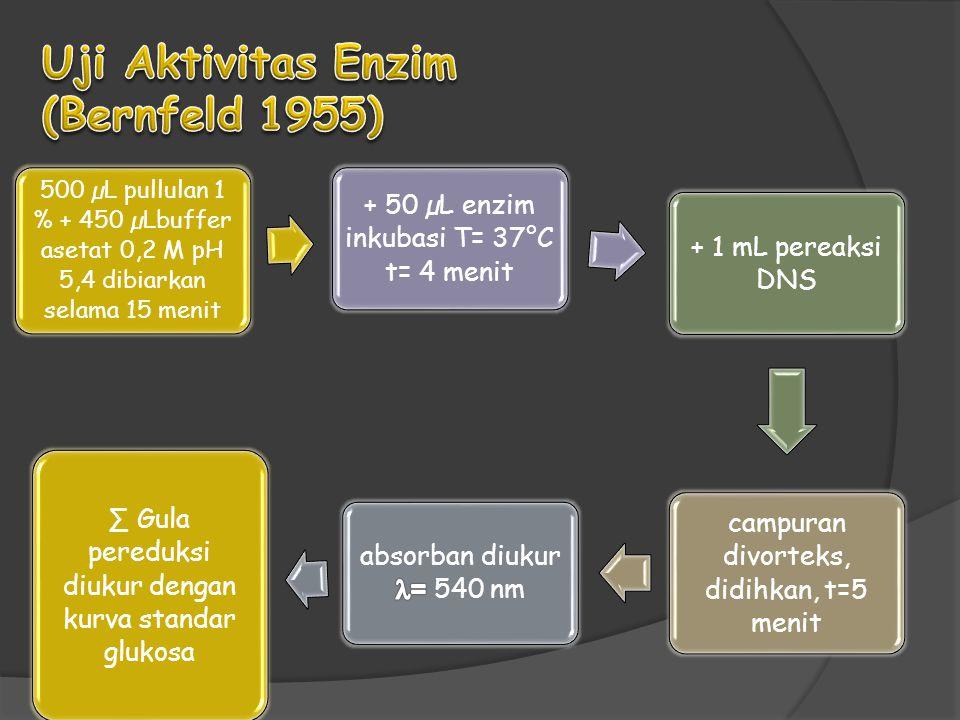 Uji Aktivitas Enzim (Bernfeld 1955)