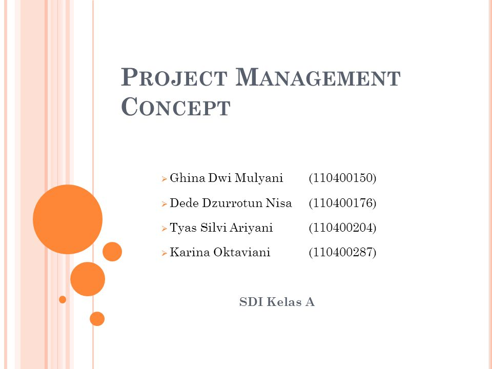 Project Management Concept