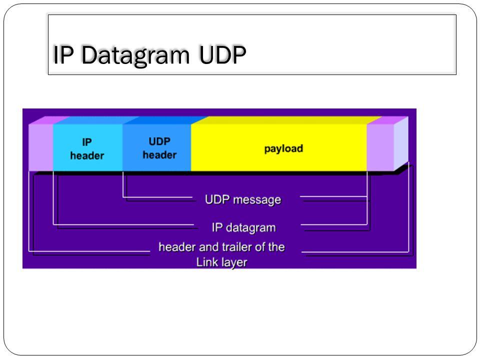 3/30/2011 IP Datagram UDP