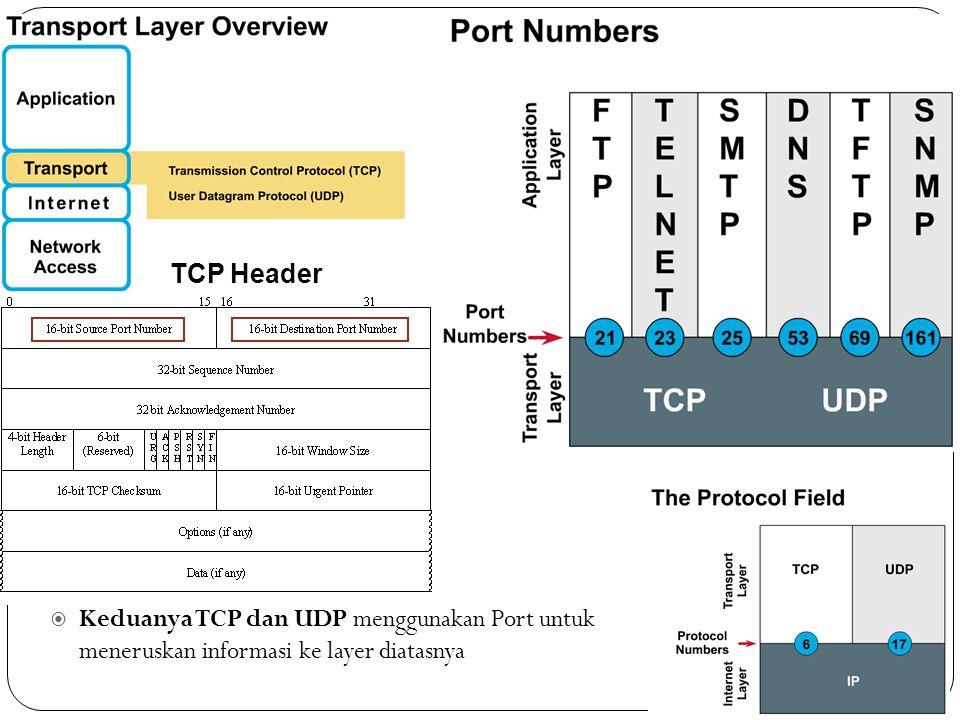 3/30/2011 TCP Header.