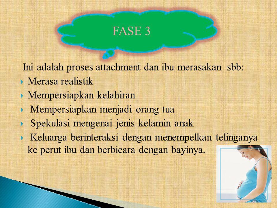 FASE 3 Ini adalah proses attachment dan ibu merasakan sbb: