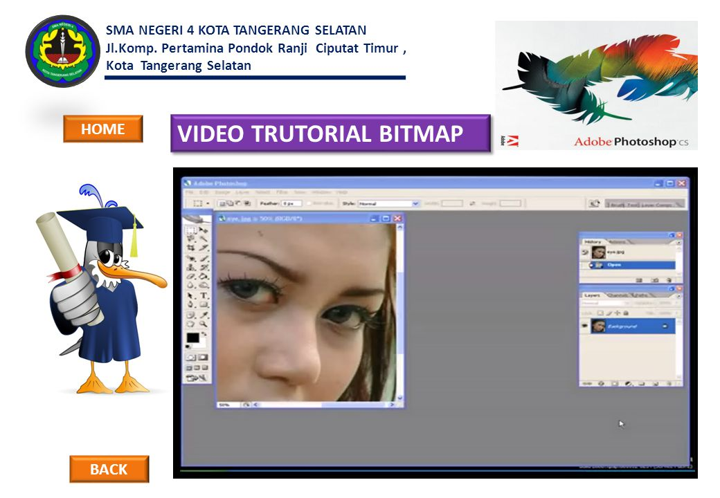 VIDEO TRUTORIAL BITMAP