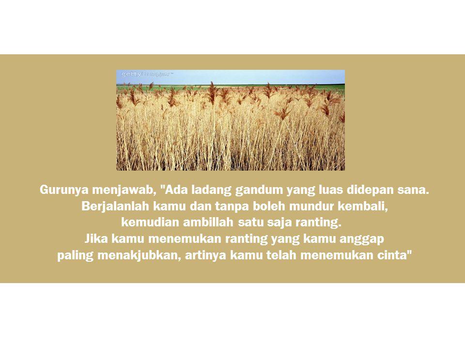 Gurunya menjawab, Ada ladang gandum yang luas didepan sana.