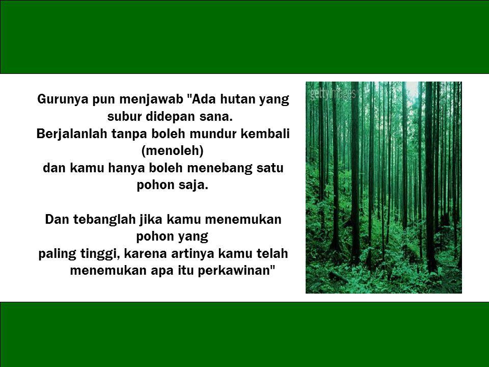 Gurunya pun menjawab Ada hutan yang subur didepan sana.