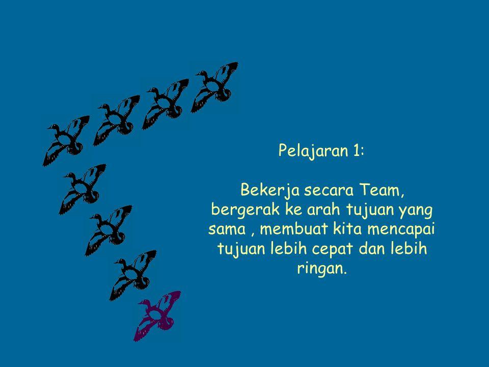 Pelajaran 1: Bekerja secara Team, bergerak ke arah tujuan yang sama , membuat kita mencapai tujuan lebih cepat dan lebih ringan.