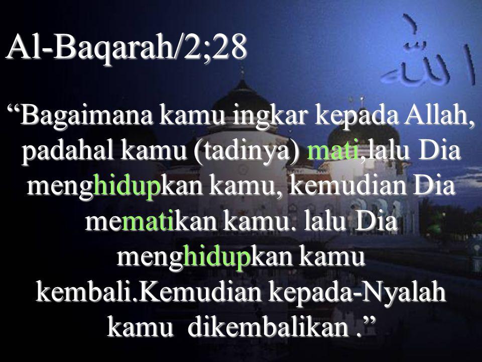 Al-Baqarah/2;28