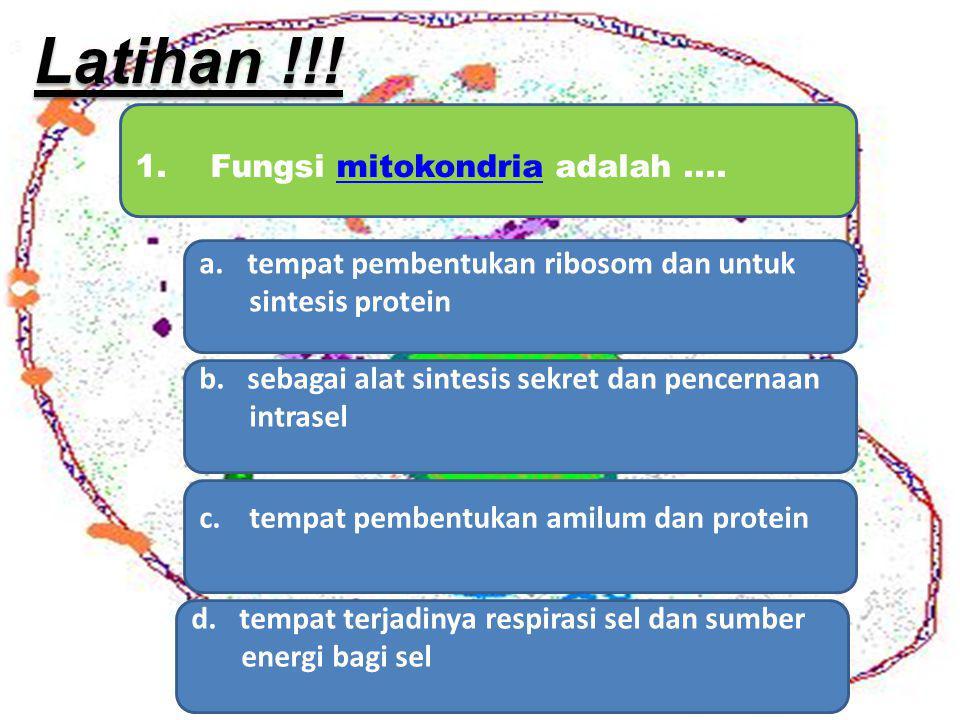 Latihan !!! 1. Fungsi mitokondria adalah ....