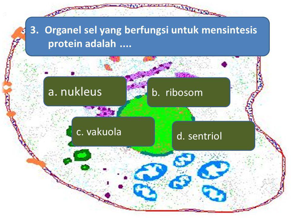 a. nukleus Organel sel yang berfungsi untuk mensintesis
