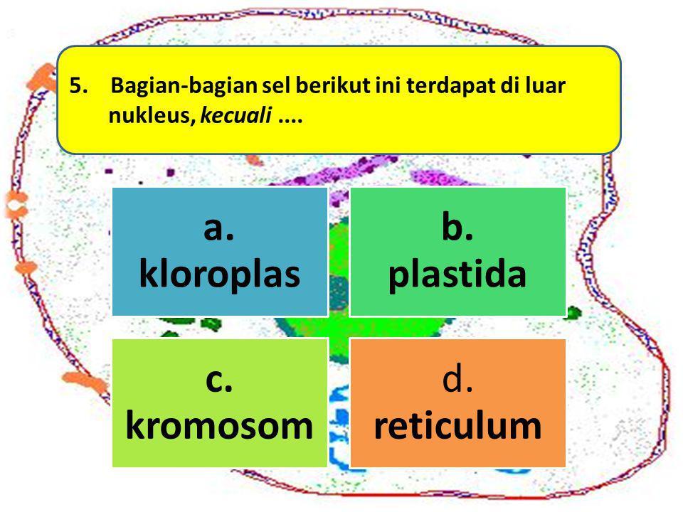 a. kloroplas b. plastida c. kromosom