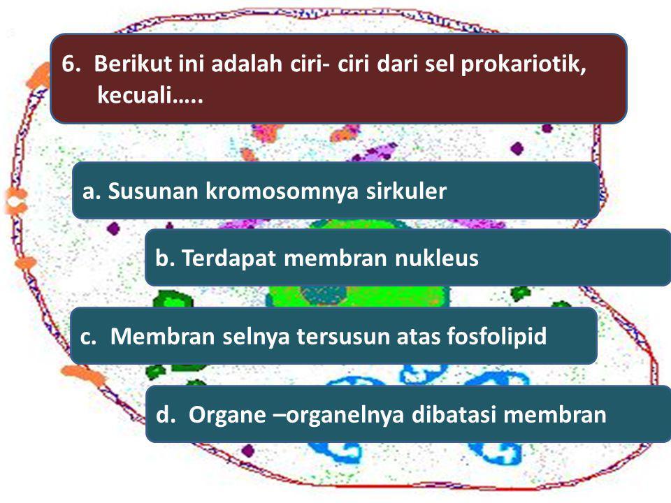 6. Berikut ini adalah ciri- ciri dari sel prokariotik,