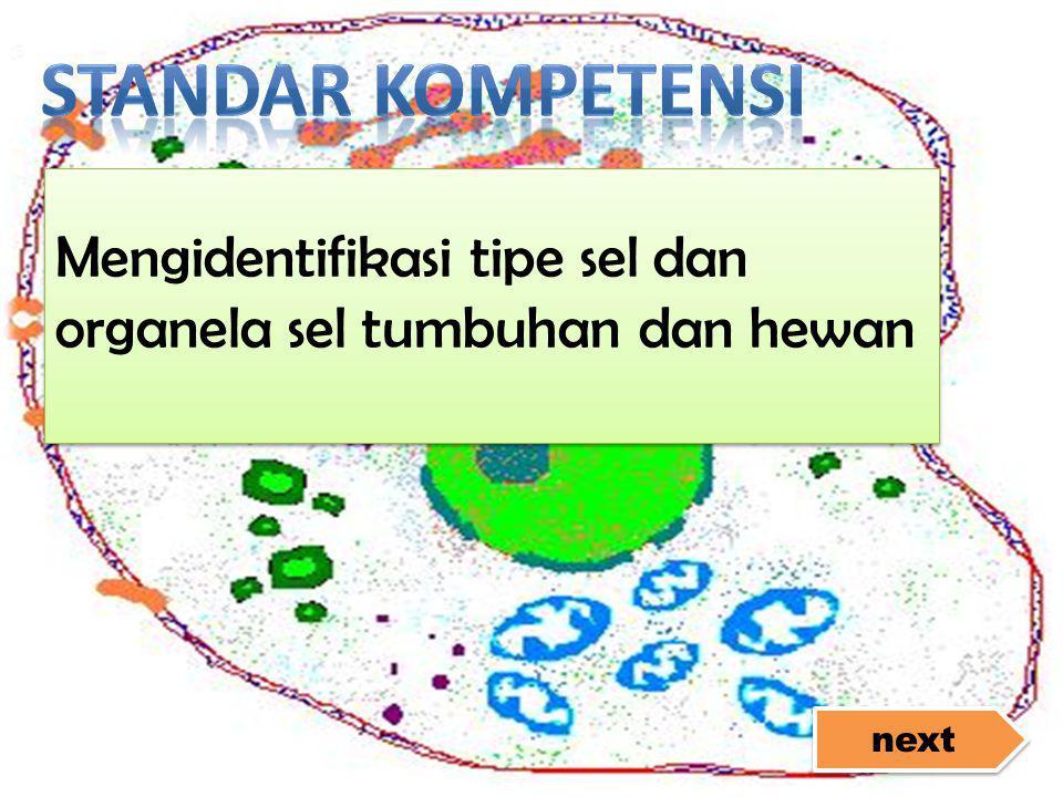Standar Kompetensi Mengidentifikasi tipe sel dan organela sel tumbuhan dan hewan next