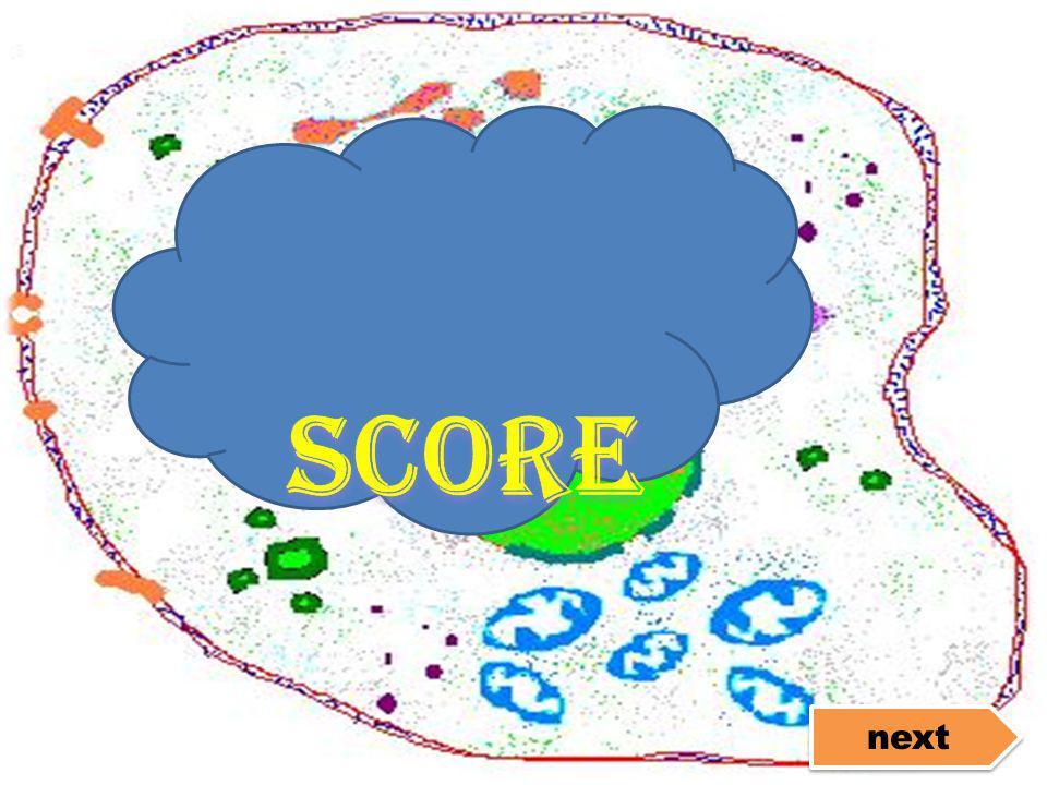 score next