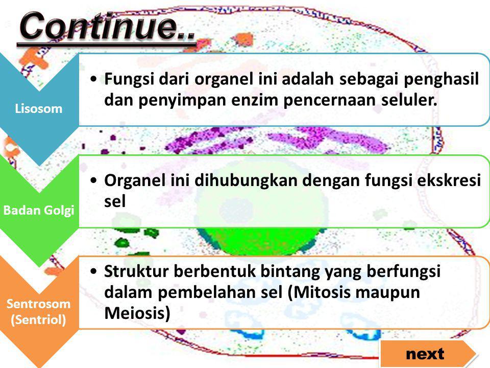 Continue.. Lisosom. Fungsi dari organel ini adalah sebagai penghasil dan penyimpan enzim pencernaan seluler.