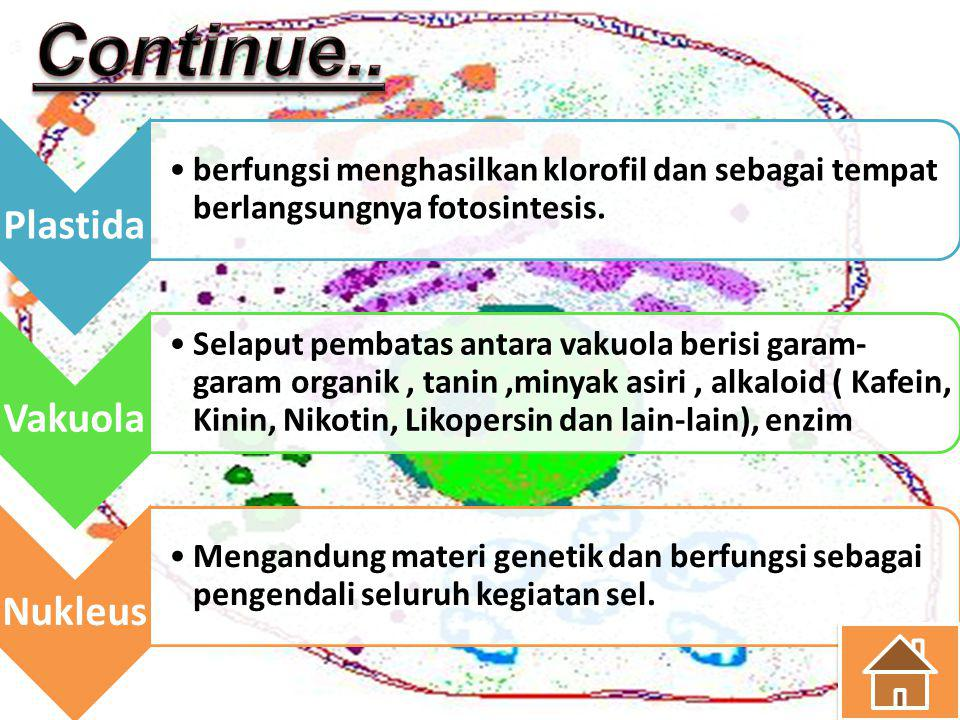 Continue.. Plastida Vakuola Nukleus