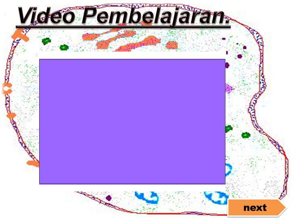 Video Pembelajaran. next