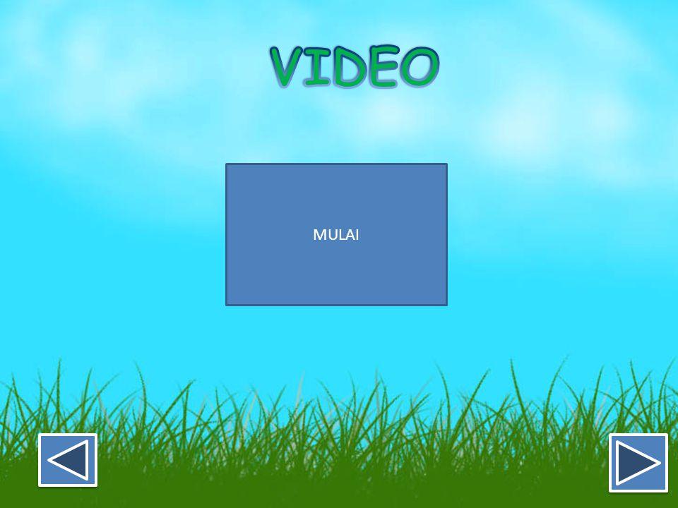 VIDEO MULAI