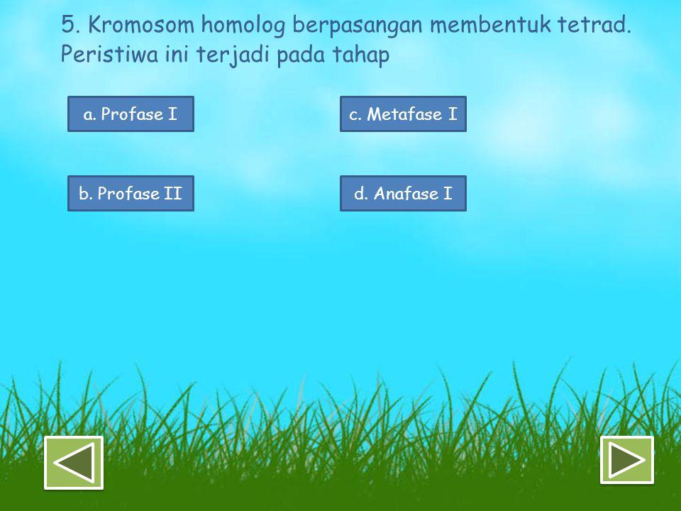 5. Kromosom homolog berpasangan membentuk tetrad