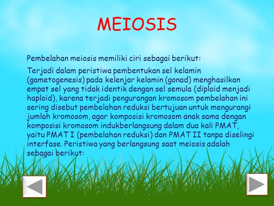 MEIOSIS Pembelahan meiosis memiliki ciri sebagai berikut: