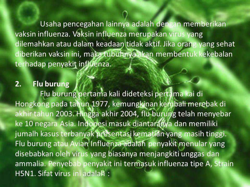 Usaha pencegahan lainnya adalah dengan memberikan vaksin influenza