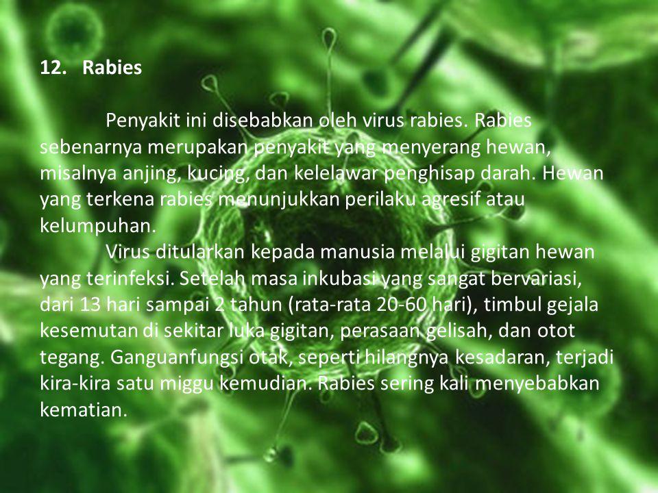 12. Rabies. Penyakit ini disebabkan oleh virus rabies