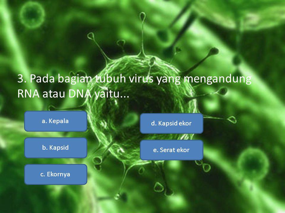 3. Pada bagian tubuh virus yang mengandung RNA atau DNA yaitu...