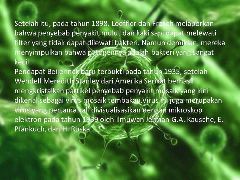 Setelah itu, pada tahun 1898, Loeffler dan Frosch melaporkan bahwa penyebab penyakit mulut dan kaki sapi dapat melewati filter yang tidak dapat dilewati bakteri.
