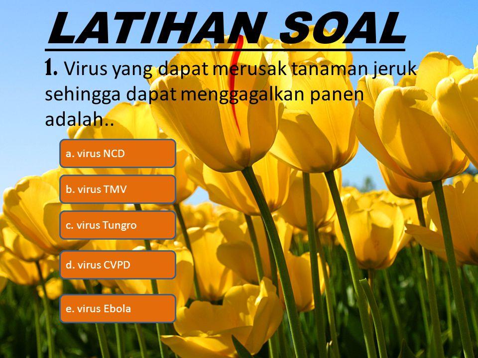 LATIHAN SOAL 1. Virus yang dapat merusak tanaman jeruk sehingga dapat menggagalkan panen adalah.. a. virus NCD.