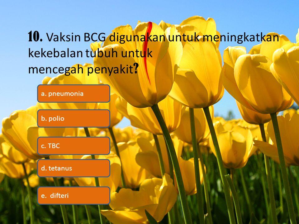 10. Vaksin BCG digunakan untuk meningkatkan kekebalan tubuh untuk
