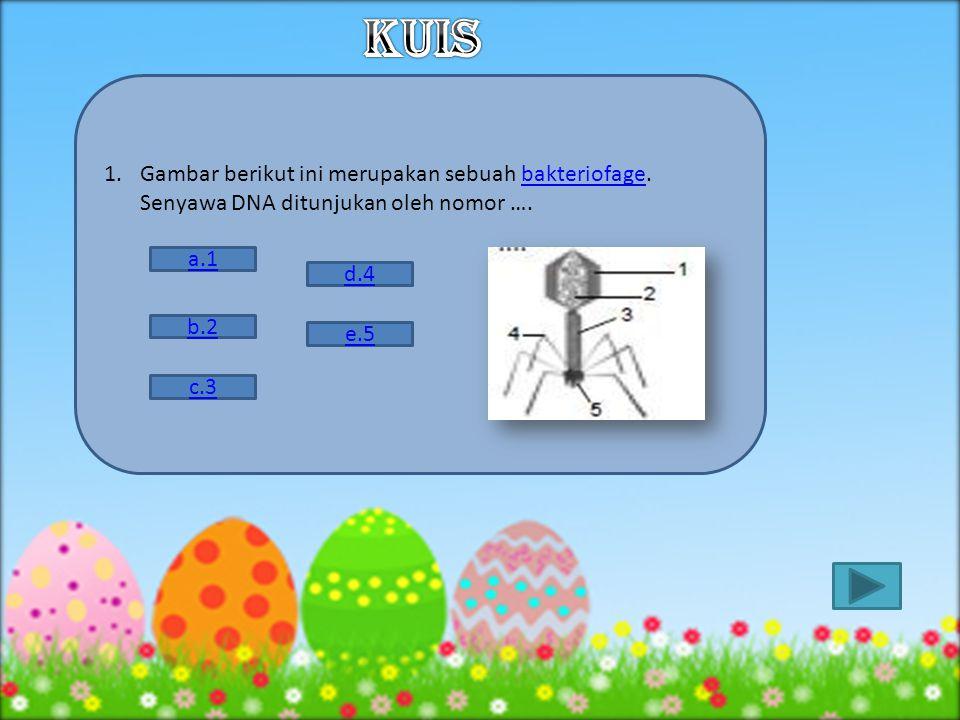 KUIS Gambar berikut ini merupakan sebuah bakteriofage. Senyawa DNA ditunjukan oleh nomor …. a.1. d.4.