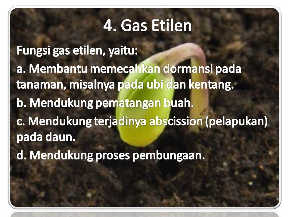 4. Gas Etilen Fungsi gas etilen, yaitu: