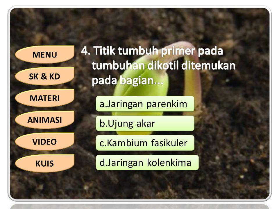 4. Titik tumbuh primer pada tumbuhan dikotil ditemukan pada bagian...