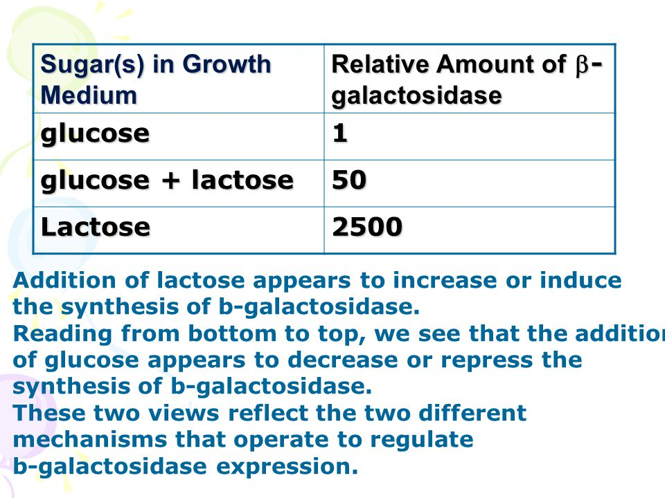 Sugar(s) in Growth Medium Relative Amount of b-galactosidase glucose 1
