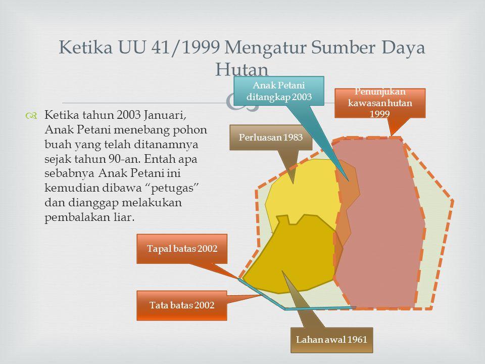 Ketika UU 41/1999 Mengatur Sumber Daya Hutan