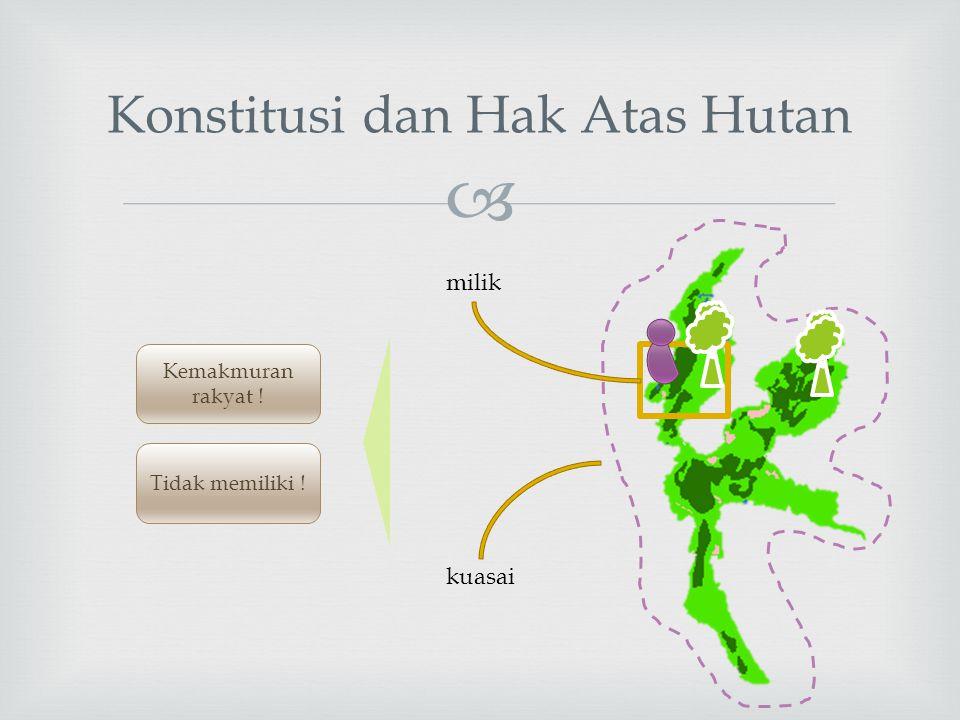 Konstitusi dan Hak Atas Hutan