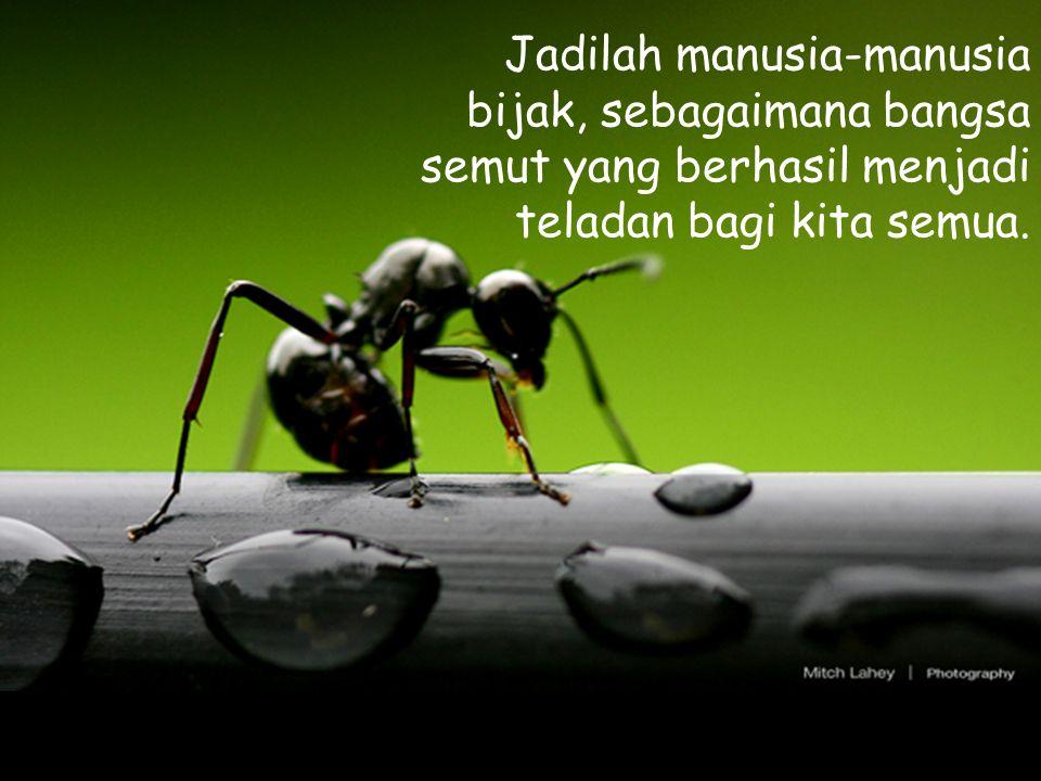 Jadilah manusia-manusia bijak, sebagaimana bangsa semut yang berhasil menjadi teladan bagi kita semua.