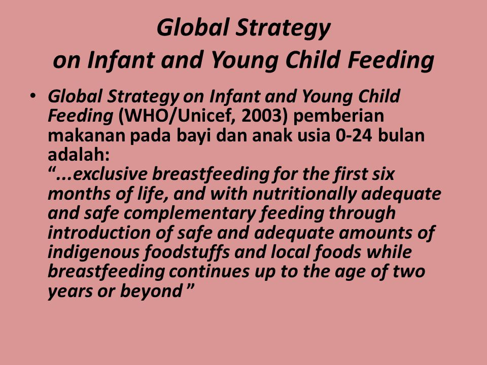 Global Strategy on Infant and Young Child Feeding