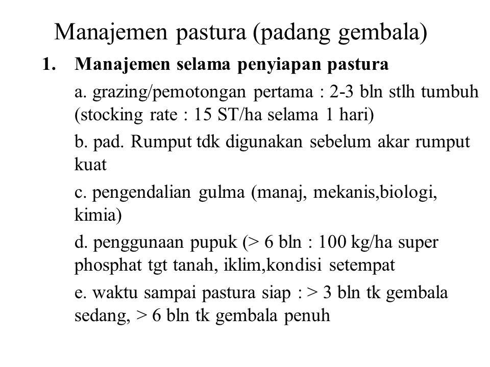 Manajemen pastura (padang gembala)