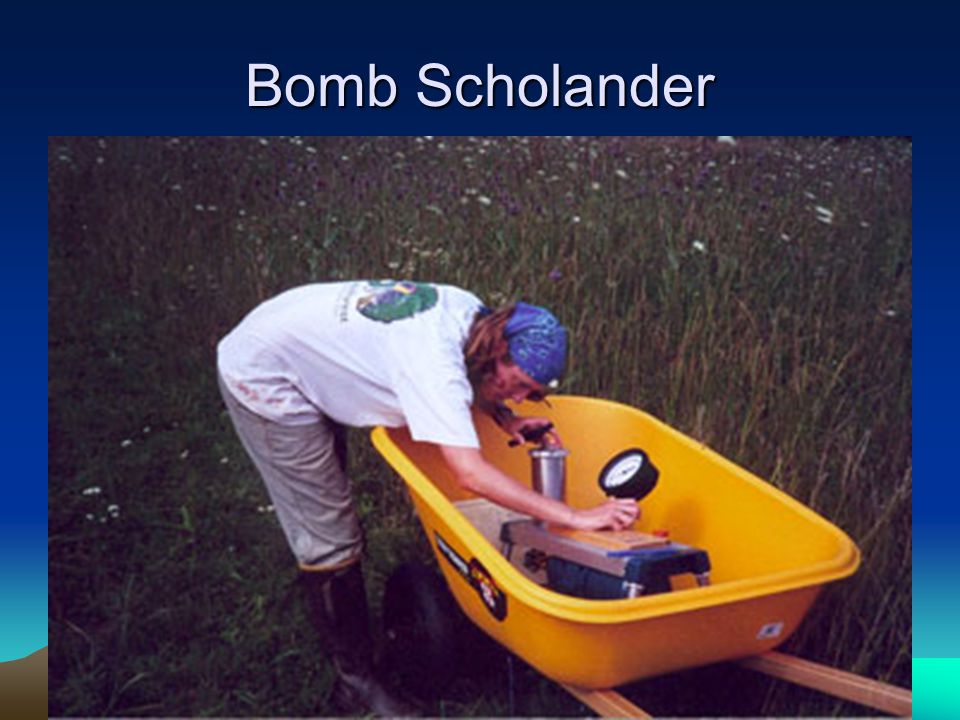 Bomb Scholander
